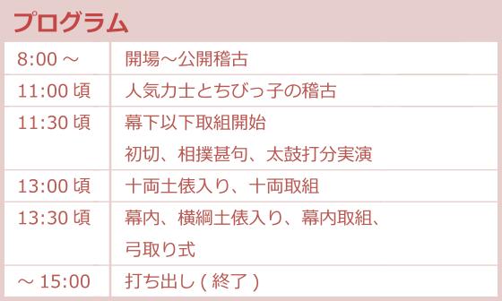 大相撲地方巡業 大阪場所プログラム