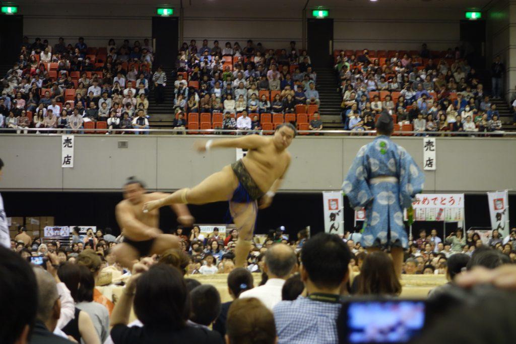 大相撲地方巡業】生の相撲を初めて観戦!感想と次回の楽しみ方