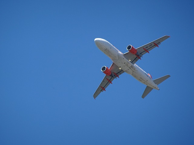 100席未満の飛行機もOK!機内持ち込み可能なおすすめスーツケース10選