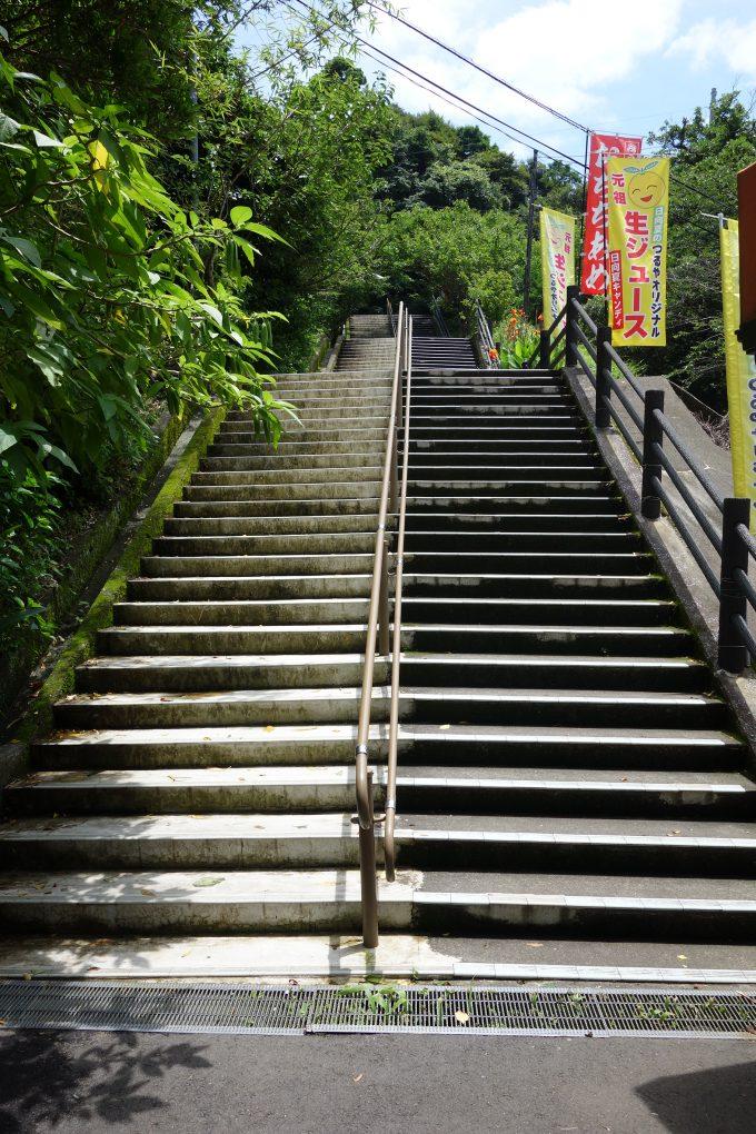 鵜戸神宮 参道の階段